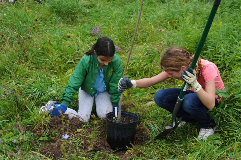 Upper La Platte Tree Planting courtesy Lake Champlain Land Trust