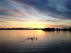 People Swimming in Lake Champlain photo courtesy Lake Champlain Land Trust