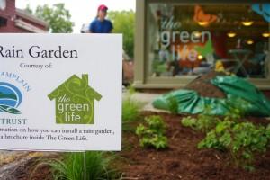 Green Life Rain Garden Aug 17 2012 34