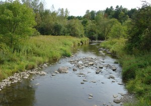 Upper La Platte River Natural Area conserved by the Lake Champlain Land Trust