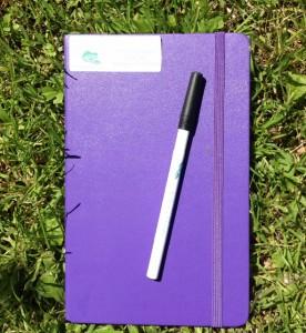 journal 1 (590x640)