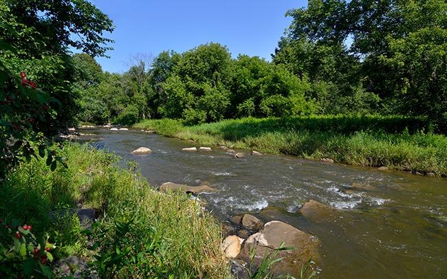Upper La Platte River in Summer