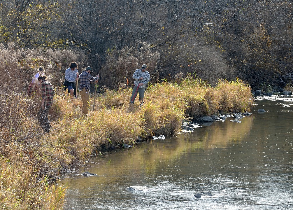 Planting trees along the Upper La Platte River
